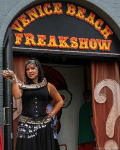 Bildet sier alt. Bydelen Venice Beach er kanskje verdens fremste Freakshow.